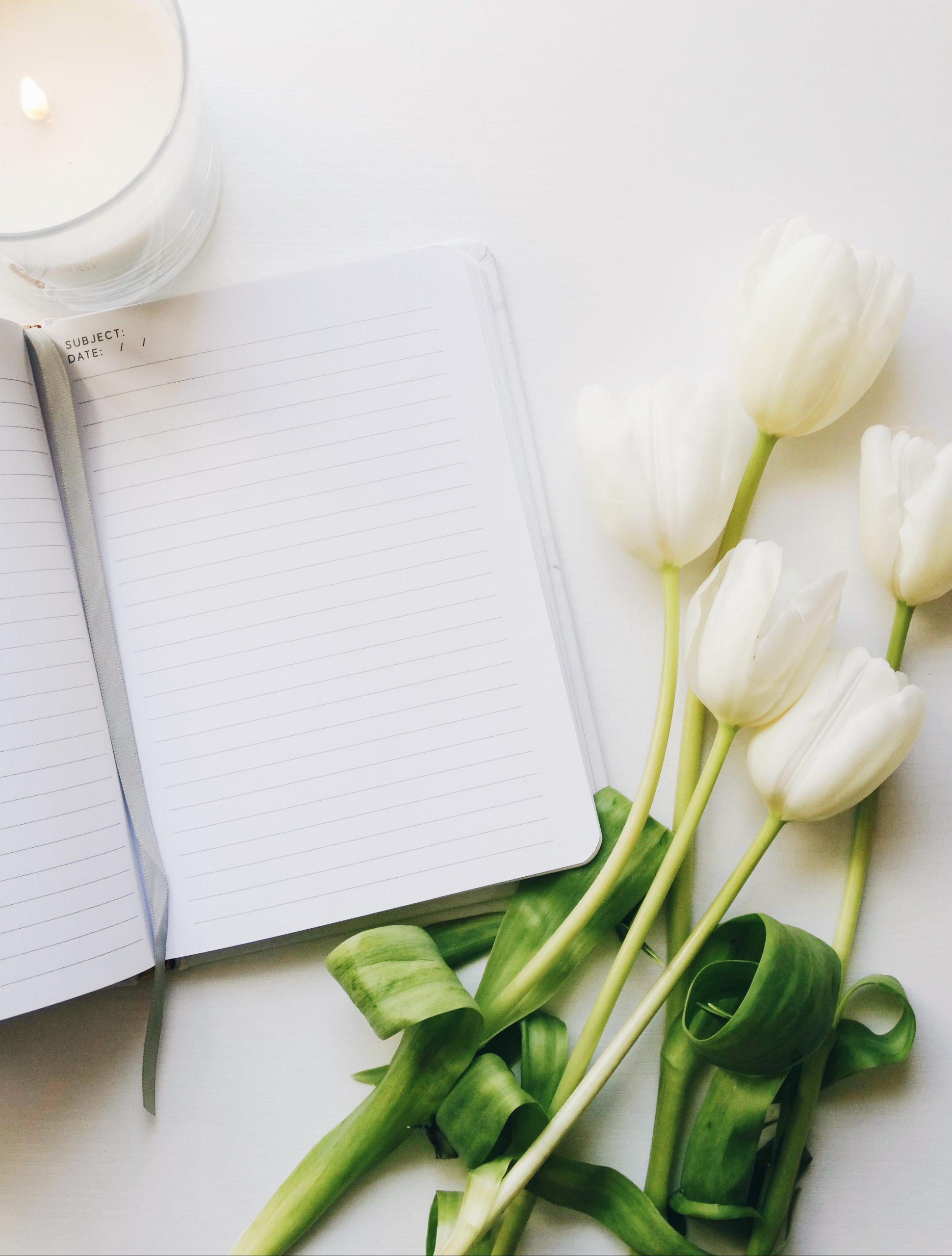 Diary Entry #21
