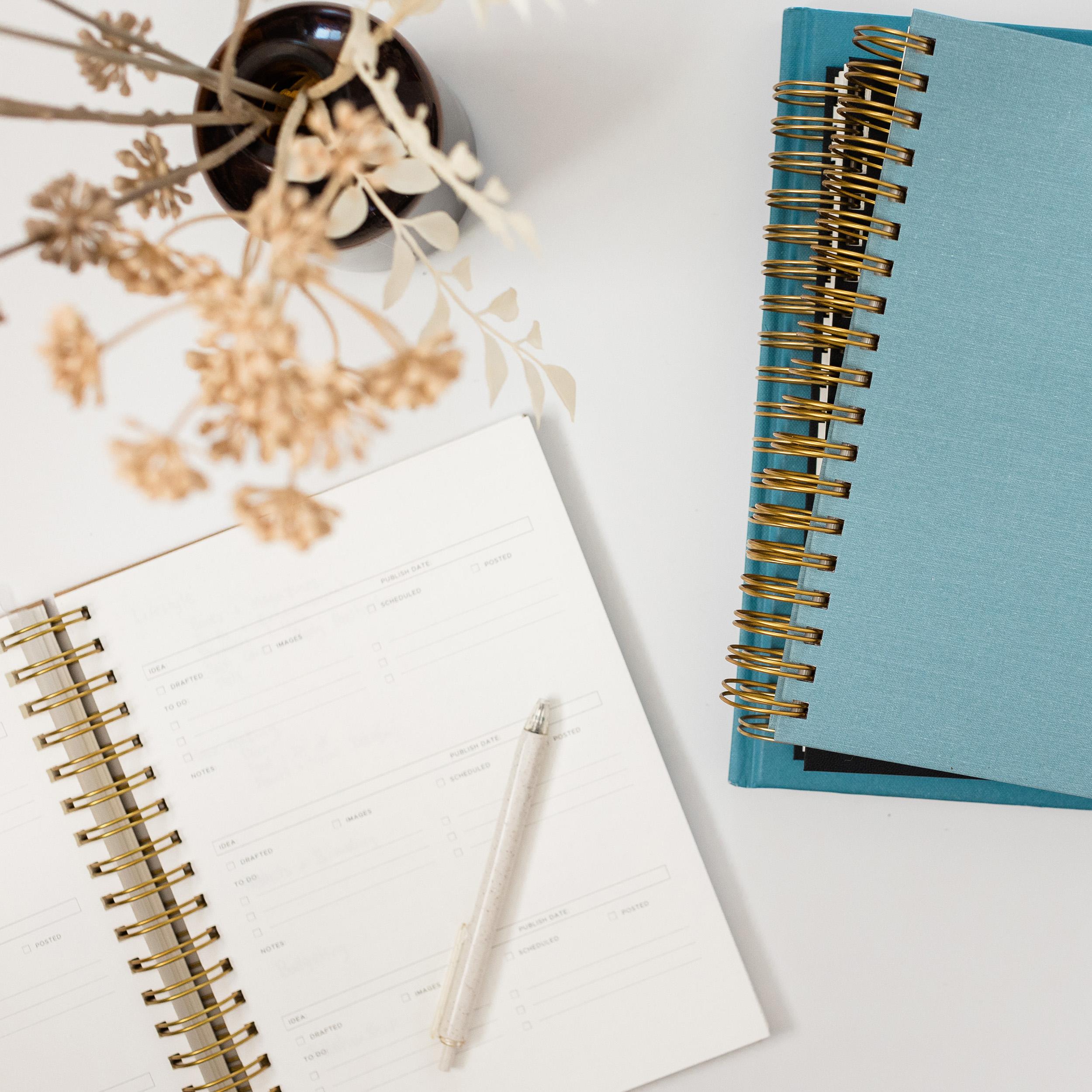 Diary Entry #28