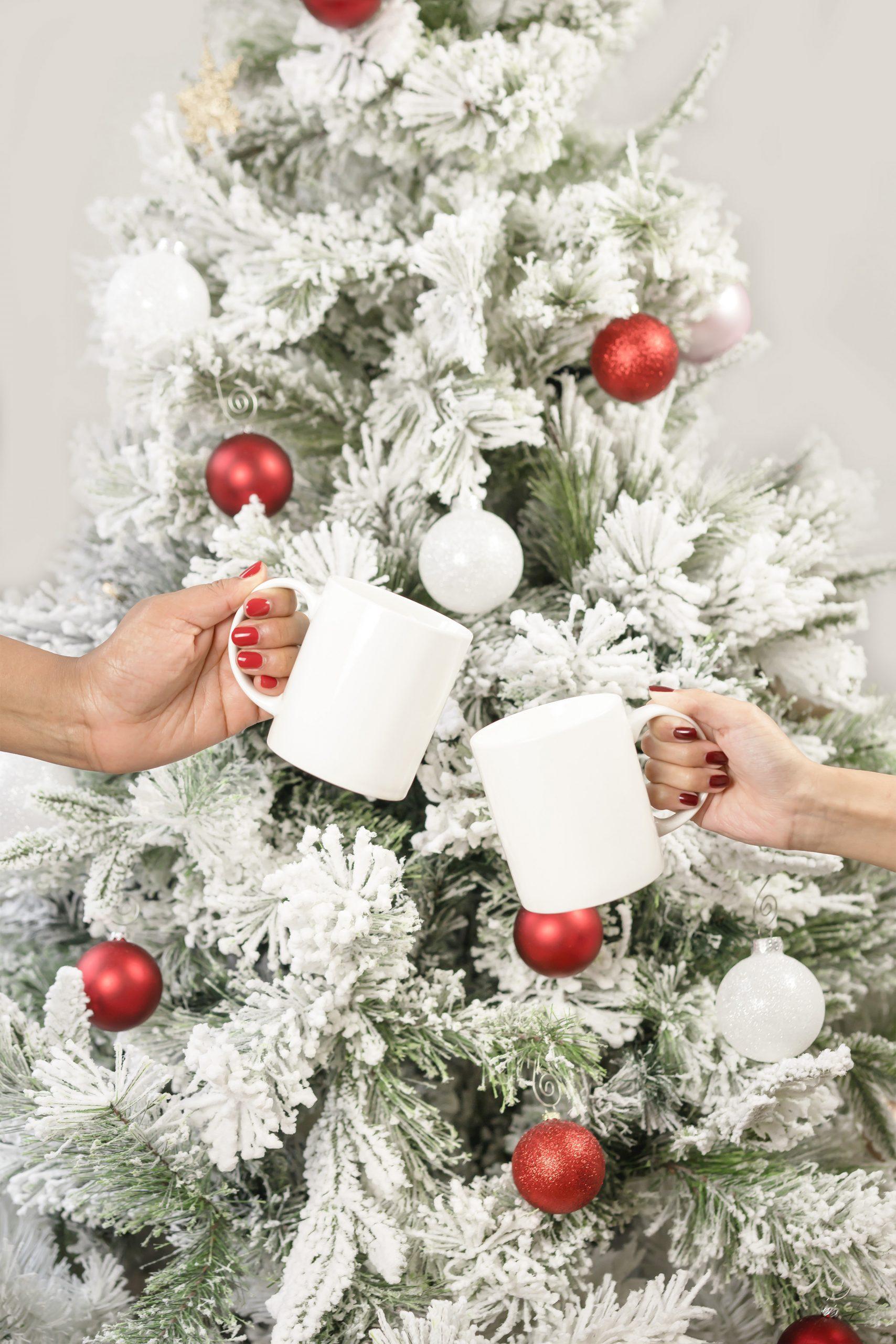 Blogmas Day 19: Diary Entry #30-Merry Christmas!